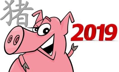Свинья на год свиньи 2019