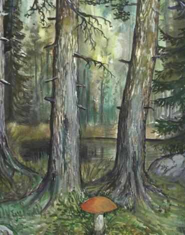 Собирая грибы бойтесь в лесу ловких