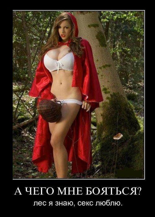 Фото красной шапочки лес я знаю