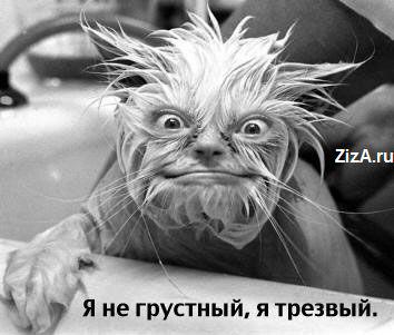 Лечение алкоголизма Симферополь по телефону +38 (0652)