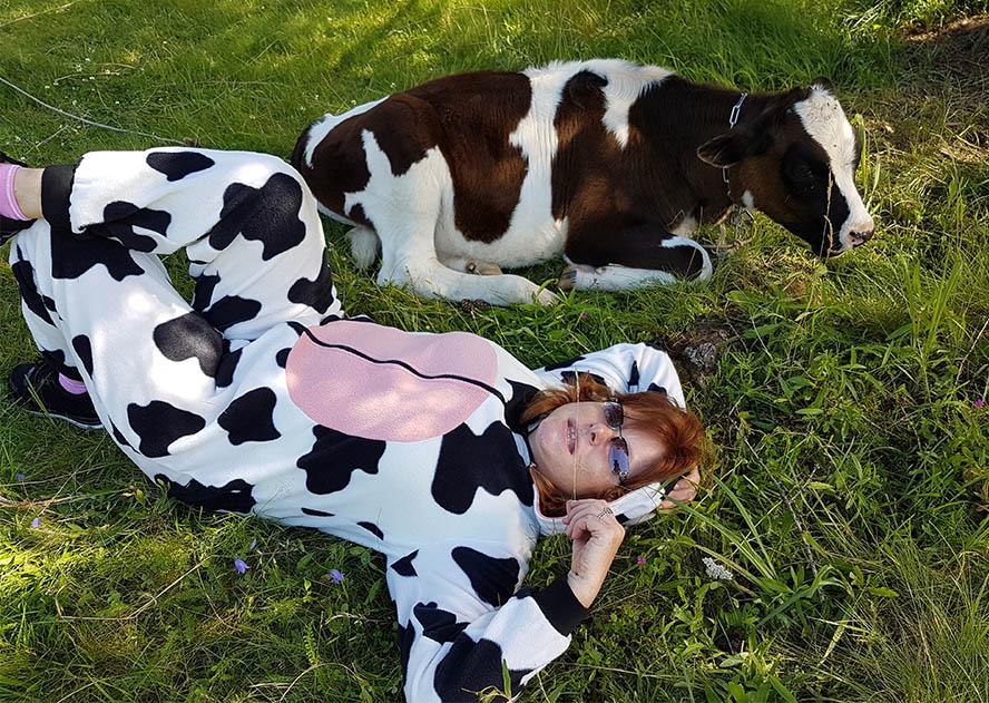мы священные коровы