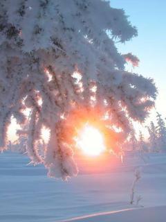 Солнце взошло((((