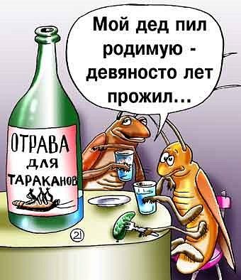 http://www.hohmodrom.ru/upload/4838/projimg/120636/hohmodrom_x_24c9fbbd.jpg