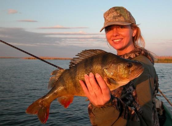 рыбалка спиннинг белгород