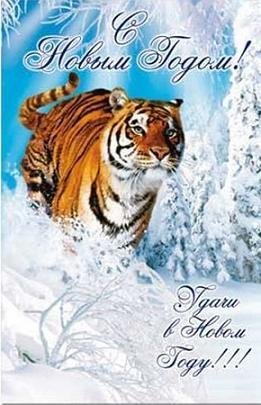 Сценарий поздравление с годом тигра фото 500