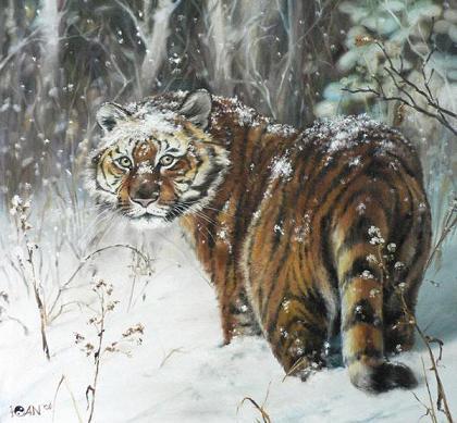 Сценарий поздравление с годом тигра фото 142
